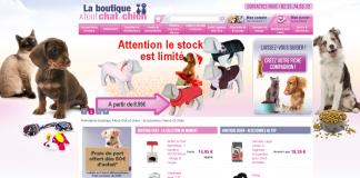 boutique chat chien